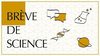 Logo série Brève de science du CNRS