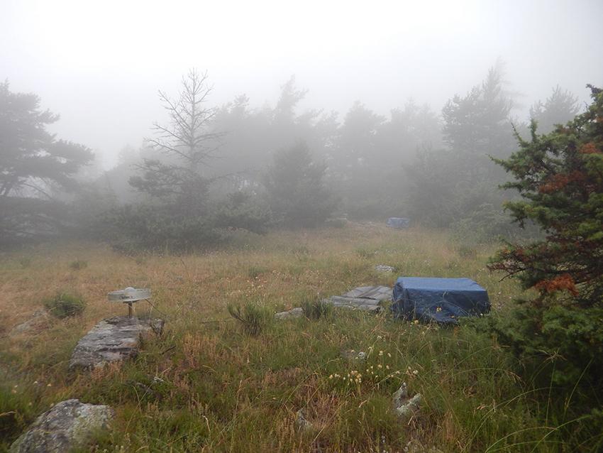 Campagne GNSS dans le Briançonnais juillet 2021 : site de BUZ